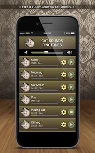 Cat Sounds Ringtones 3