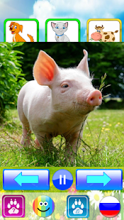 Animal sounds. Learn animals names for kids 7.0 screenshots 2
