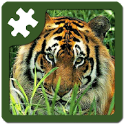 Wild animals puzzle: Jigsaw
