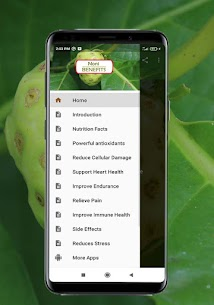 Health Benefits of Noni For Pc – How to get in Windows 7,8, 10 and Mac) 2