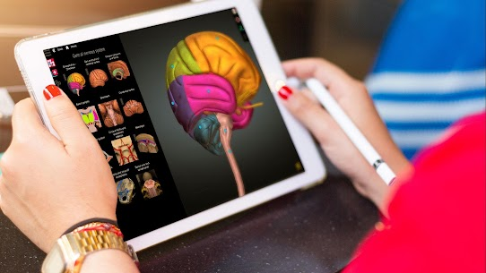 Anatomy Learning – 3D Anatomy Atlas 2