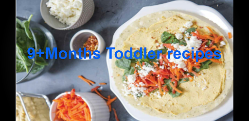 9+Months Toddler recipes .APK Preview 0