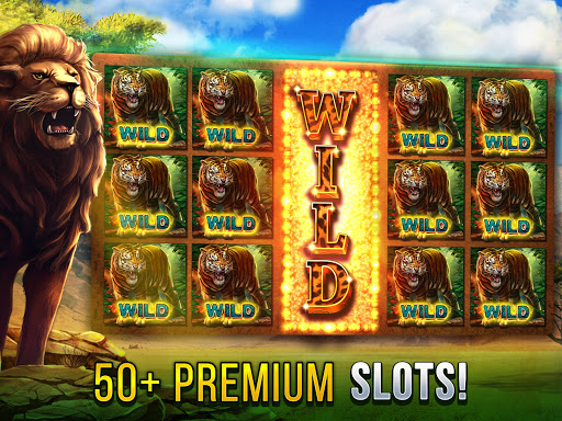 Cats Slot Machines 2.8.3600 screenshots 1