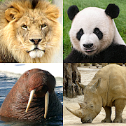 Animals Quiz - Learn All Mammals and Dinosaurs!