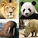 動物クイズゲーム : 動物園ですべての哺乳類、鳥類、爬虫類、魚を学ぶ!そして恐竜!