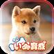 幸せの柴犬育成ゲーム3D - Androidアプリ