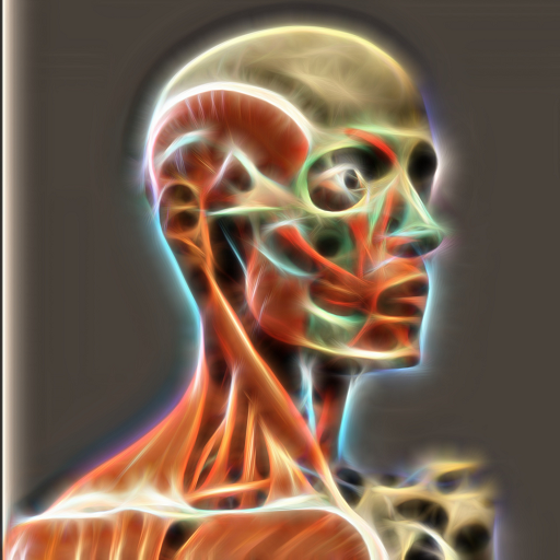 Baixar 3D Human Anatomy Atlas para Android