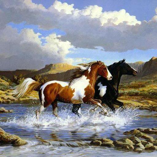 Horses Jigsaw Puzzles 2.9.44 screenshots 14