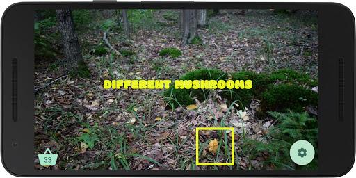 Mushroom picker 2 - try to find real mushrooms 1.37 screenshots 3