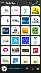 Egypt Radio Stations Online For Pc (Download On Computer & Laptop) 1
