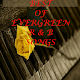 BEST OF EVERGREEN R&B SONGS Download on Windows