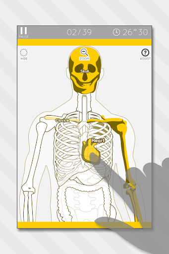 Enjoy Learning Anatomy puzzle 3.2.3 screenshots 1