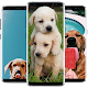 Cute Puppies and Dogs wallpapers para PC Windows