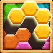 Wood Block Puzzle - Hexa