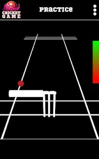 Blind Cricket