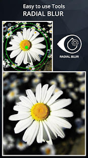DSLR Camera Blur Effects