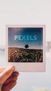 Pexels 1