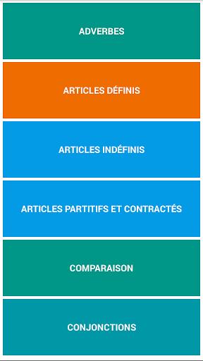 French Grammar Test  screenshots 1