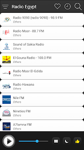 Egypt Radio Stations Online For Pc (Download On Computer & Laptop) 3