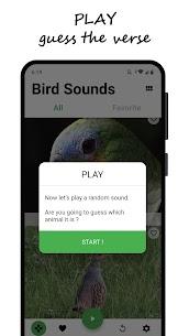 Bird sounds 2