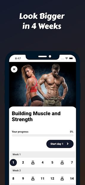Mass Building Program screenshot 2