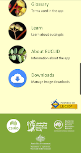 EUCLID Eucalypts of Australia For Pc – Guide To Install  (Windows 7/8/10/mac) 2