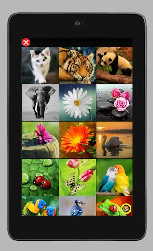 Simple Jigsaw Puzzle: Play Jigsaw Puzzle  screenshots 10