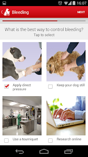 Pet First Aid - American Red Cross