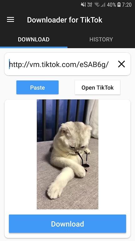 Downloader for TikTok  poster 2