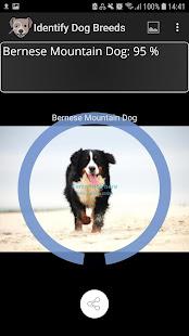 Identify Dog Breeds 45 Screenshots 1