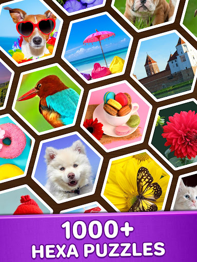 Jigsaw Puzzles Hexa ud83eudde9ud83dudd25ud83cudfaf 2.2.5 screenshots 10