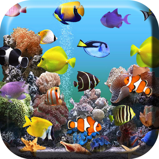Acuario Fondos Animados Apps En Google Play