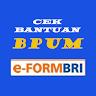 Eform - CEK PENERIMA BPUM dan UMKM BLT APK Icon