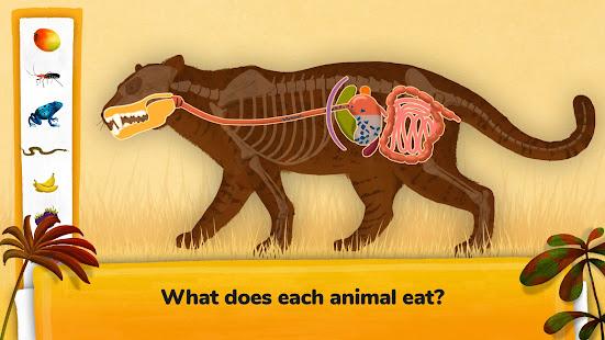 How do Animals Work?