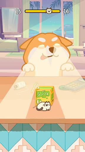 Kitten Hide Nu2019 Seek: Neko Seeking - Games For Cats 1.2.0 screenshots 8