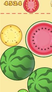 Watermelon Merge 6