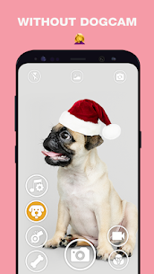 DogCam – Dog Selfie Filters and Camera 1