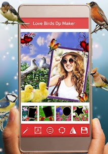Love Birds DP for For Pc – How To Download It (Windows 7/8/10 And Mac) 1