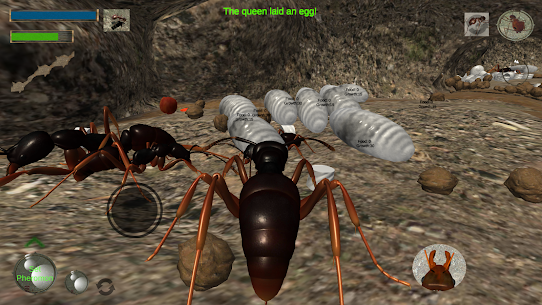 Ant Simulation 3D – Insect Survival Game Apk Download 2021 3