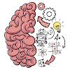 Brain Test: 트리키 퍼즐 대표 아이콘 :: 게볼루션