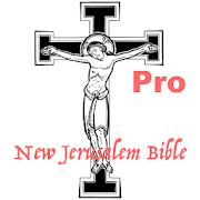 New Jerusalem Bible NJB Audio Pro  Icon