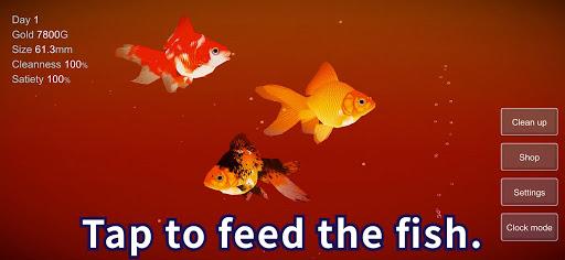 Goldfish 3D - Relaxing Aquarium Fish Tank  screenshots 4