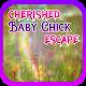 Cherished Baby Chick Escape - JRK Games APK
