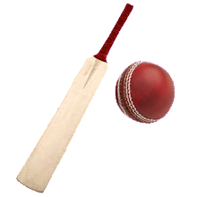 Sports : Cricket Batting Download on Windows