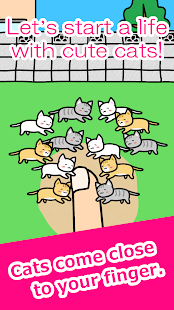 Play with Cats Screenshot
