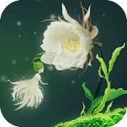 Cactus Flower Live Wallpaper
