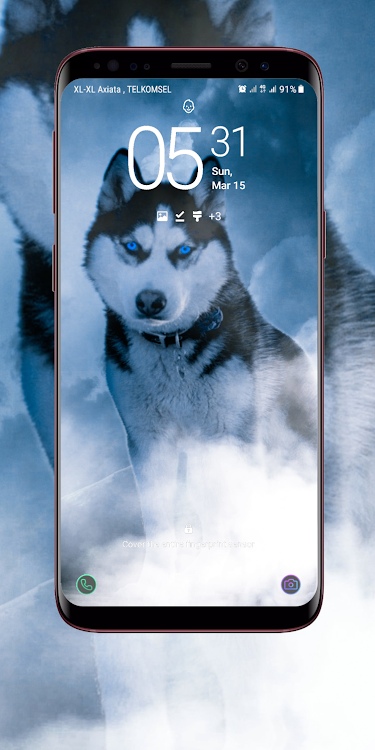 Siberian Husky Wallpaper By Ant Bee Dev Android Apps Appagg