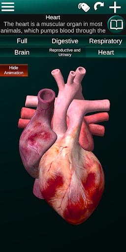 Internal Organs in 3D (Anatomy) 2.5 Screenshots 5