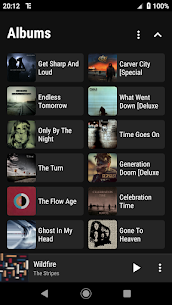 RE Equalizer Music Player Apk 1.0.3 (Paid) 4