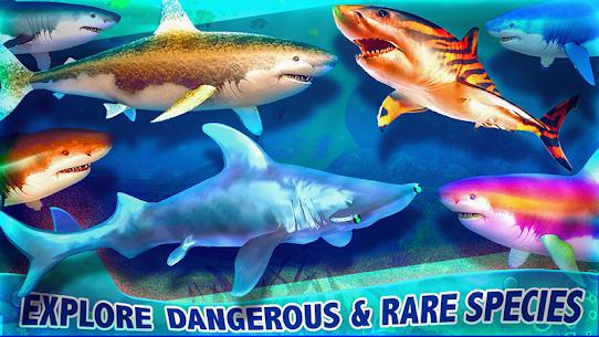 Real Shark Life – Shark Simulator Game Hack Game Android & iOS 2